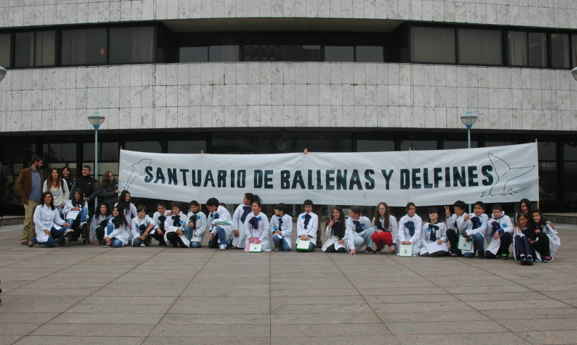 Uruguay Whale and Dolphin Sanctuary a Fact!