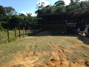 Picture Report 1 - Sloth Wellness Center Construction 4