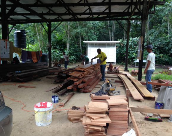 Picture Report 2 - Sloth Wellness Center Construction 7