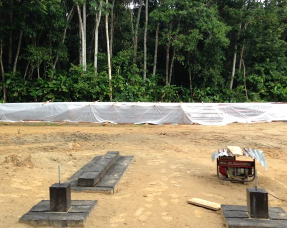 Picture Report 2 - Sloth Wellness Center Construction 15