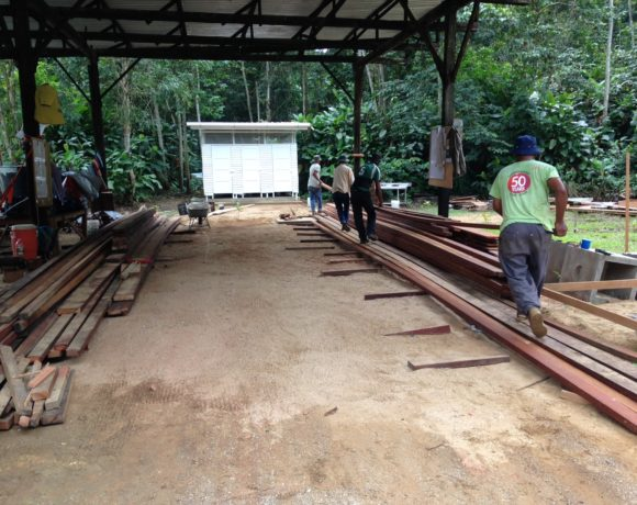 Picture Report 2 - Sloth Wellness Center Construction 16