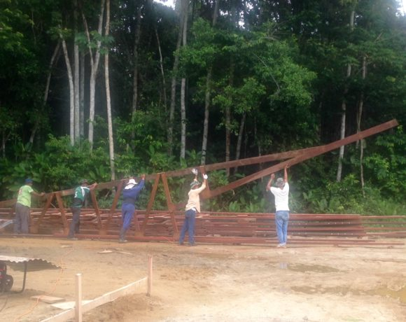 Picture Report 2 - Sloth Wellness Center Construction 17