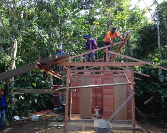 Picture Report 3 - Sloth Wellness Center Construction 10