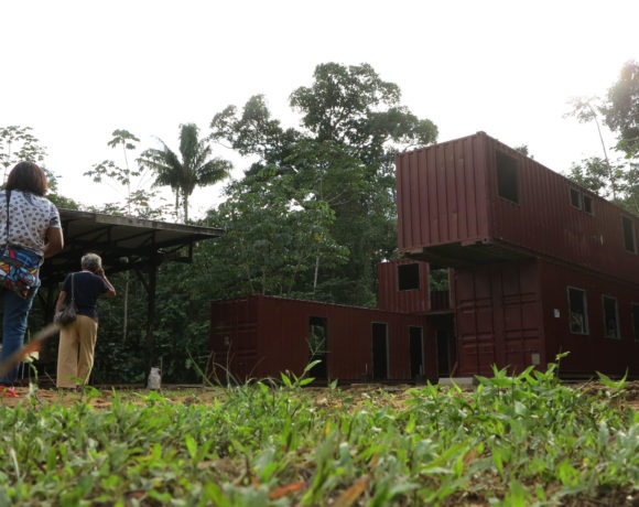 Picture Report 4 - Sloth Wellness Center Construction 7