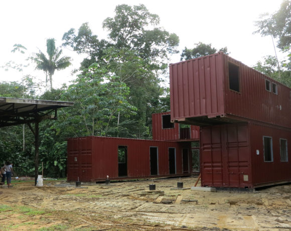 Picture Report 4 - Sloth Wellness Center Construction 8