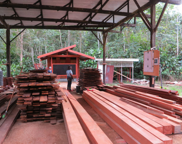 Picture Report 4 - Sloth Wellness Center Construction 11