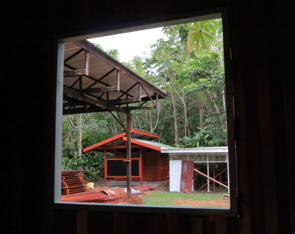 Picture Report 4 - Sloth Wellness Center Construction 9