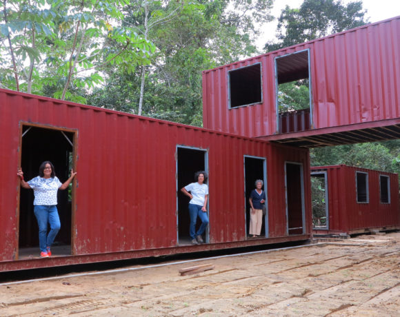 Picture Report 4 – Sloth Wellness Center Construction