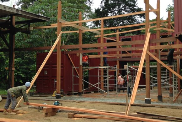 Picture Report 5 - Sloth Wellness Center Construction 11