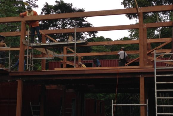 Picture Report 6 - Sloth Wellness Center Construction 5