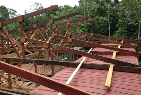 Picture Report 6 - Sloth Wellness Center Construction 7