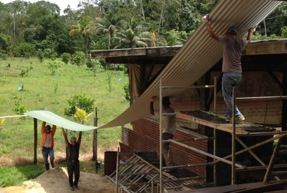 Picture Report 6 - Sloth Wellness Center Construction 12