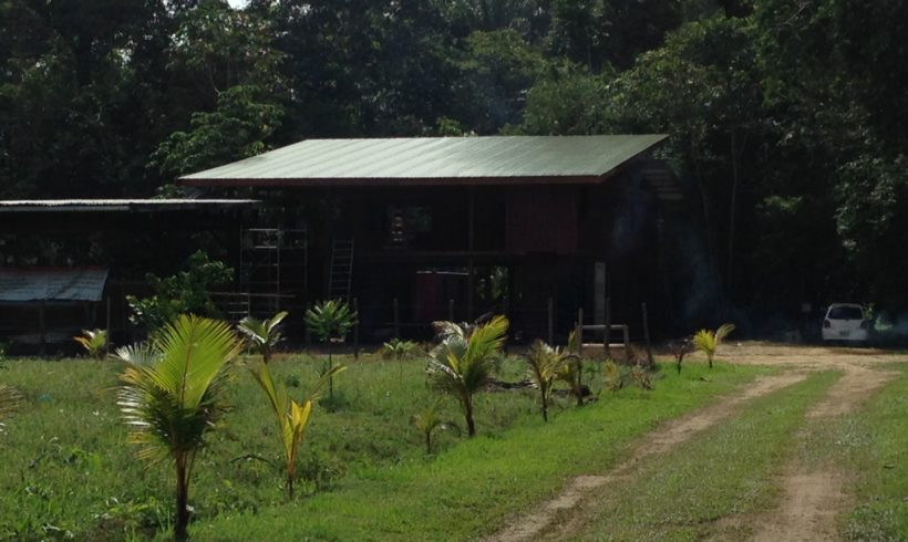 Picture Report 6 – Sloth Wellness Center Construction