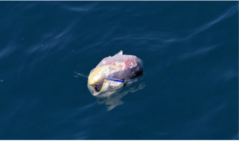 In 2050 more Plastic in the Ocean than Fish 1
