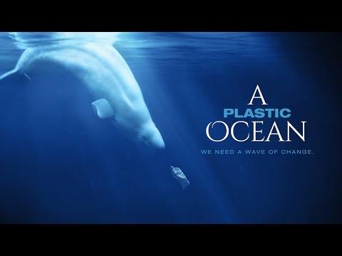In 2050 is er meer plastic in de oceaan dan vis 2