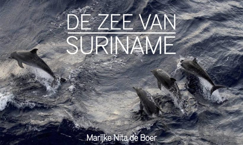 The Sea of Suriname