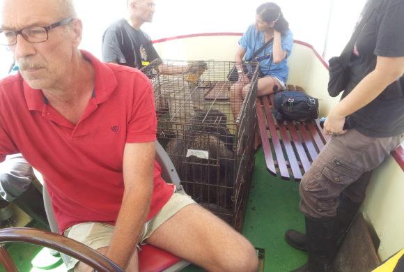 Picture Report Sloth Wellness Center 4 - Igor 3