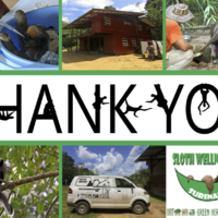 Thank you from the Sloth Wellness Center and Slothful New Year 2018!