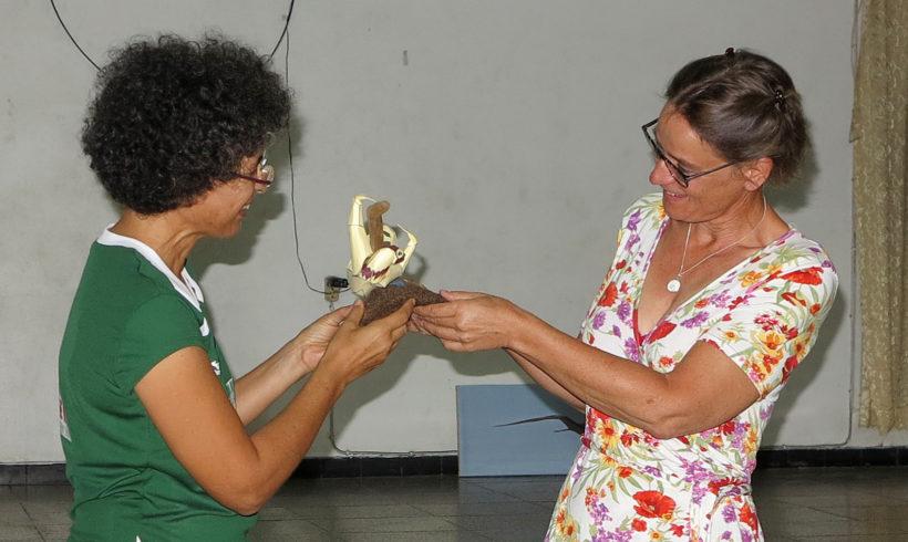 Sloth Award 2017