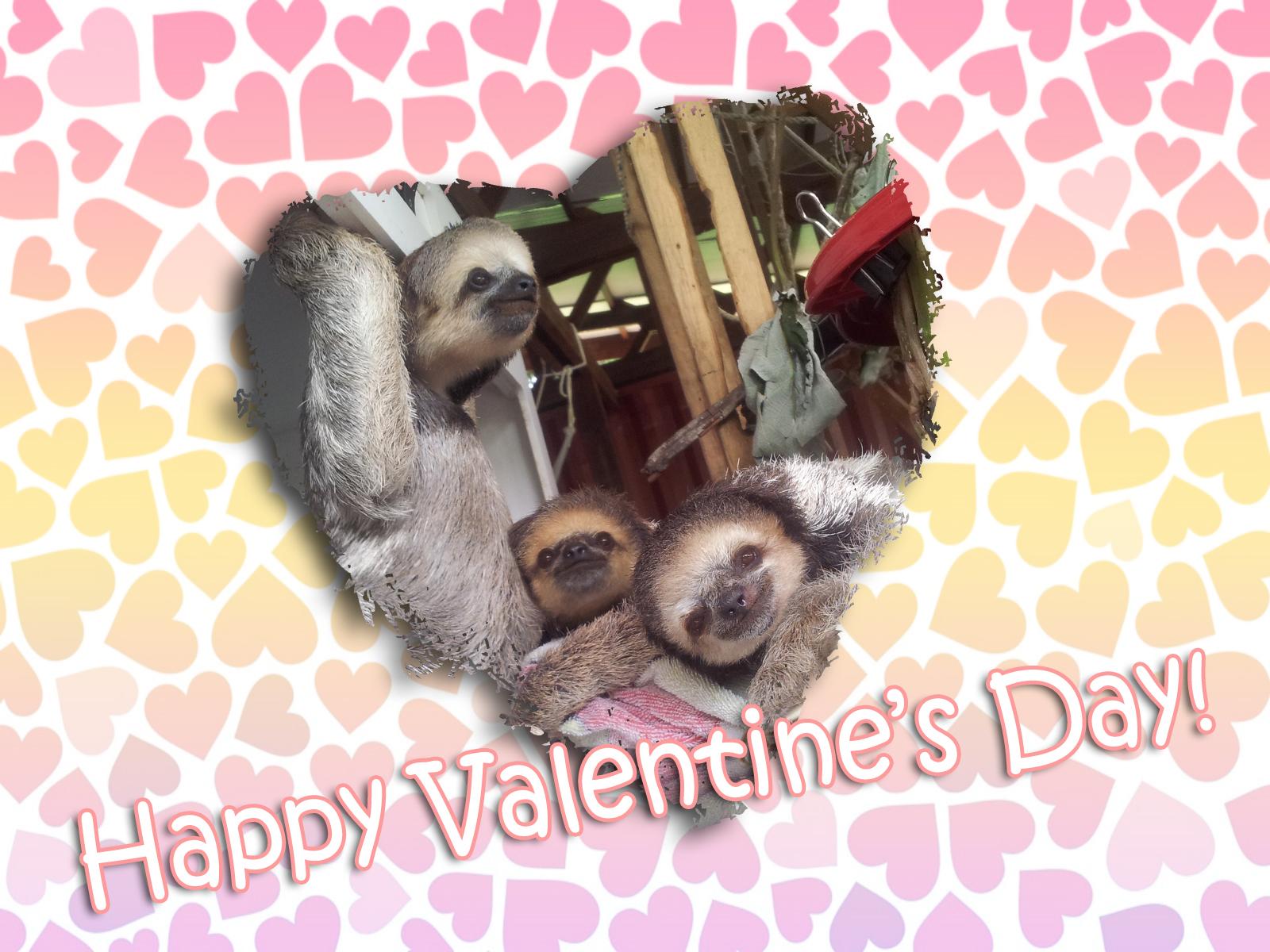 Happy Valentine's Day 1