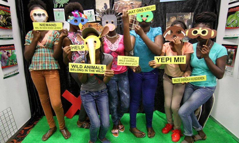 Het welzijn van wilde dieren: xenarthra, dolfijnen en lamantijnen