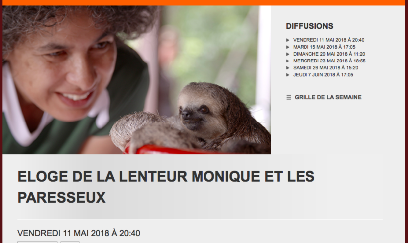 Eloge de la Lenteur Monique et les Paresseux – In Praise of Slowness Monique and the Sloths