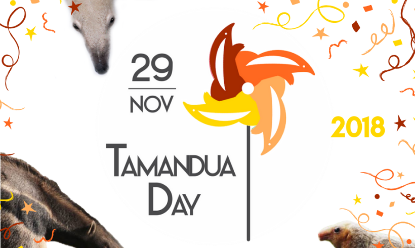 World Tamandua Day – 29 November 2018